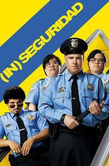 (In) Seguridad