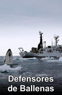 Defensores de Ballenas