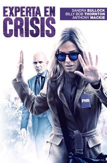 Experta en Crisis (2016) Poster