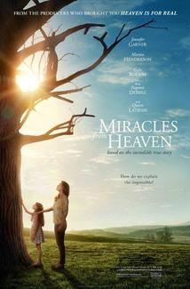 Milagros del cielo (2016) Poster