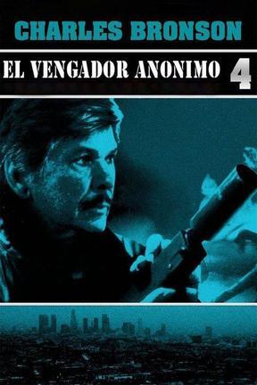 Vengador Anónimo 4: El Justiciero