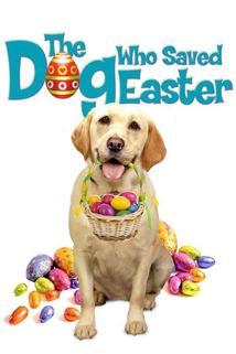 Película El Perro que Salvó La Pascua
