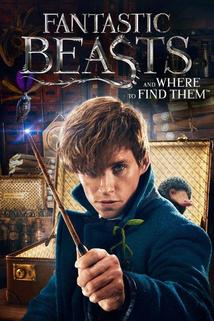 Película Fantastic Beasts and Where to Find Them