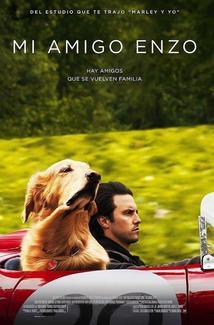 Película Mi amigo Enzo