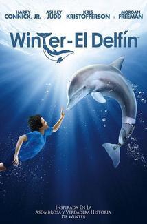 Película Dolphin Tale