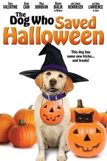 Película El Perro Que Salvó Halloween